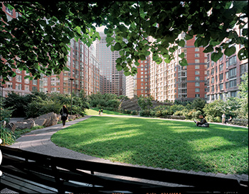Teardrop Park at Battery Park City, Manhattan.